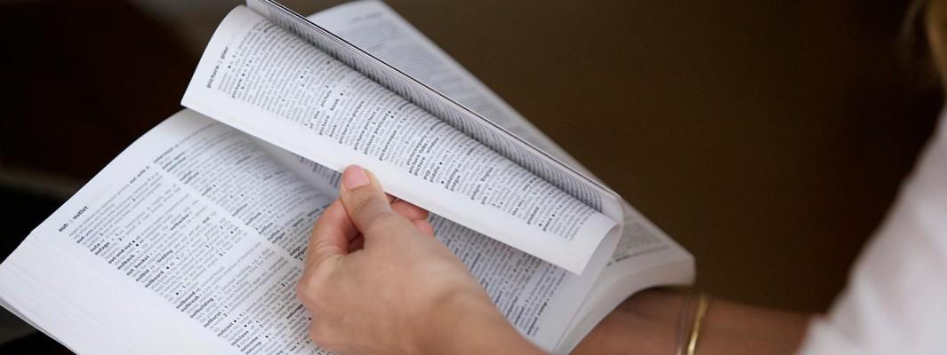 dictionary-slider